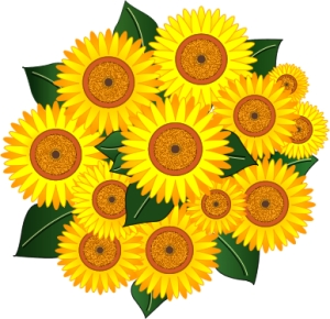 sunflower_bokay